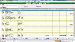 account masters- ledgers